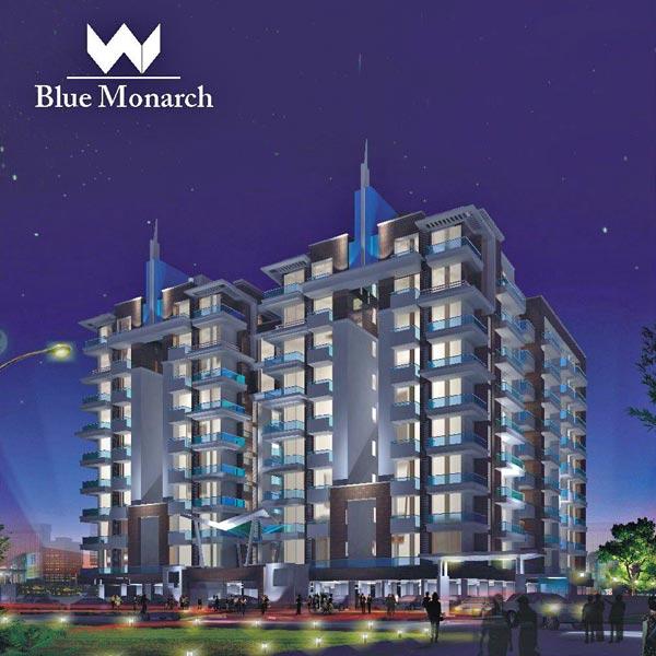 blue-monarch