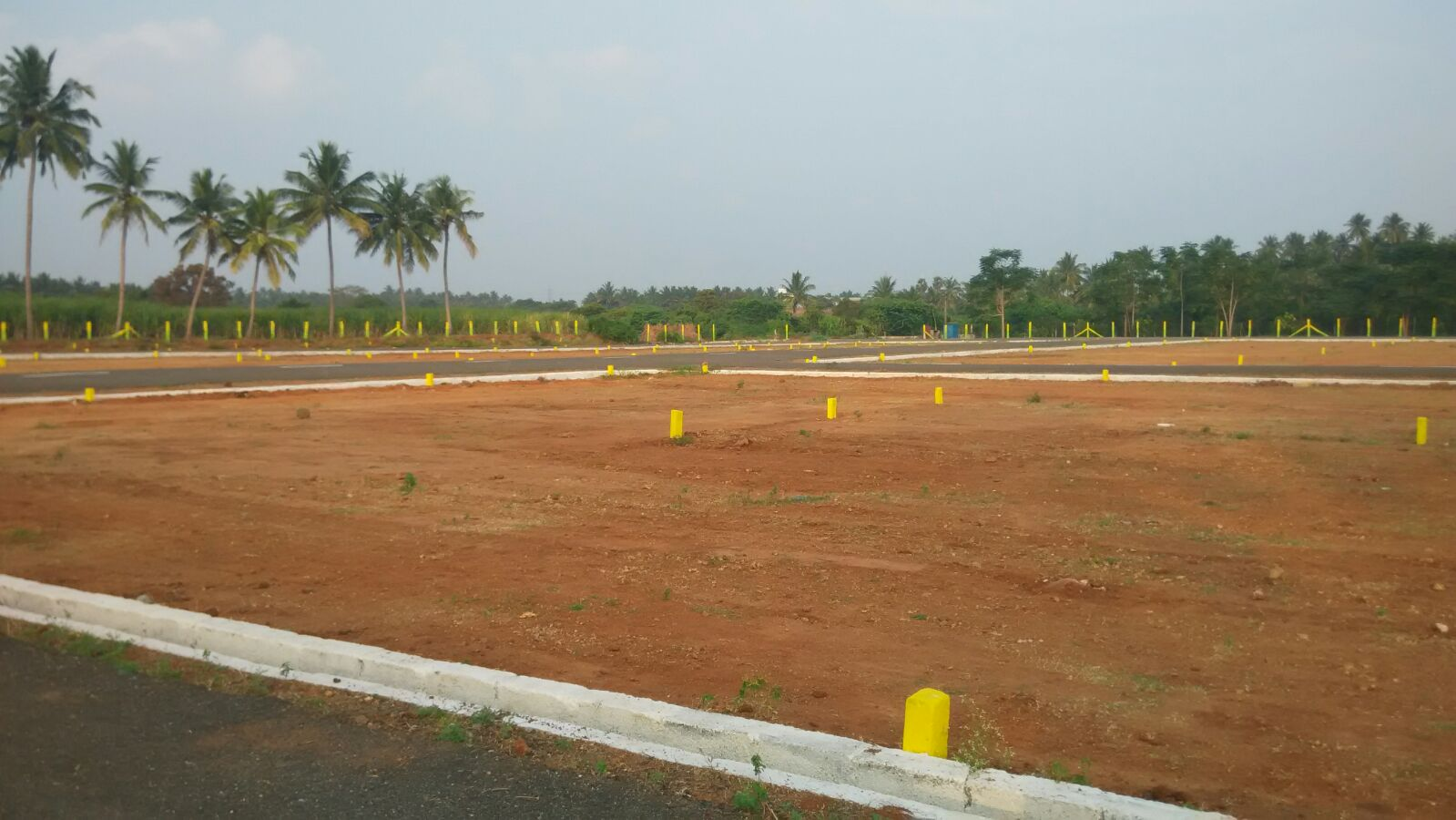 Residential Plot/Land